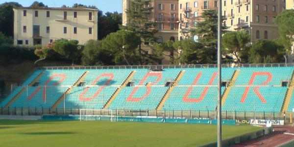Stadio Artemio Franchi - Montepaschi Arena